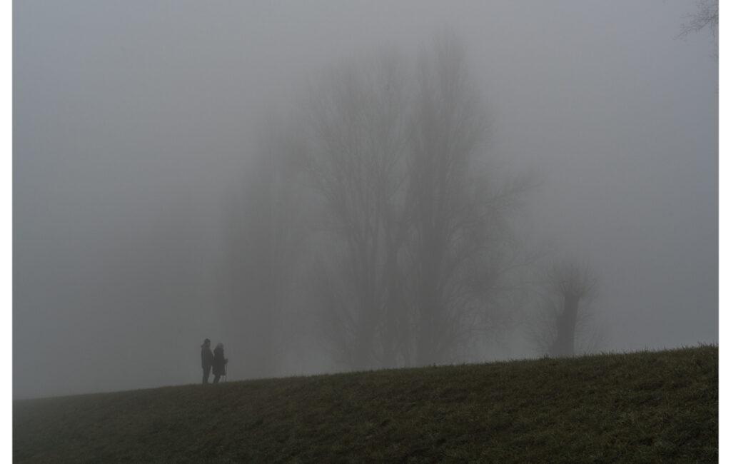 Nebelmorgen am Rhein